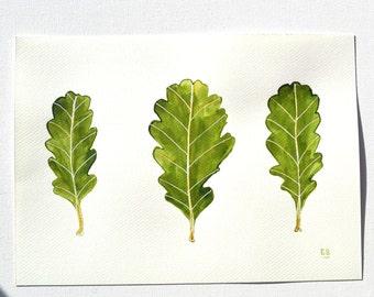 Irish Oak Leaf painting, ink leaf drawing, original leaf art, Oak leaf nature watercolour