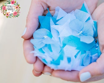Eco Friendly Tissue Paper Wedding Confetti, with Optional Hydrangea Petals! 60 Handfulls