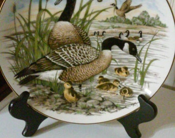 Game Birds of the South Plate by Southern Living Gallery Canada Goose