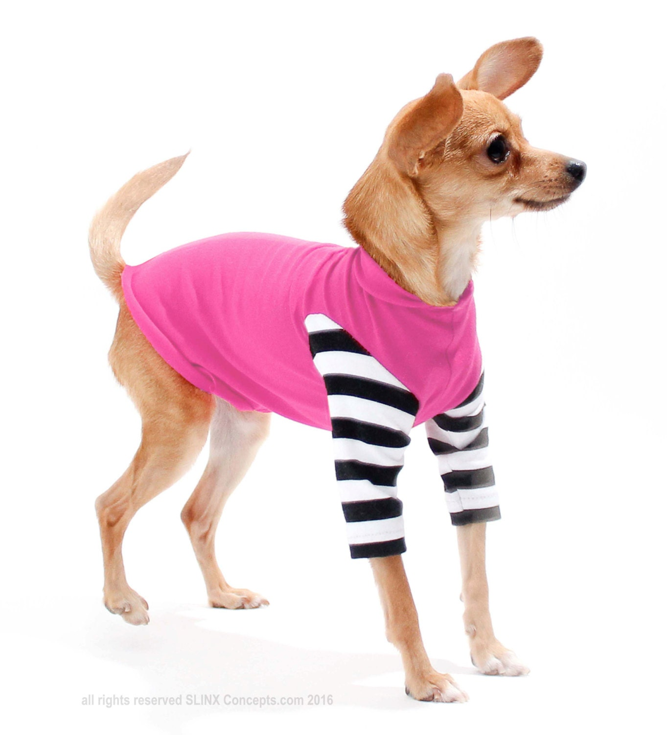 Black And White Striped Dog Shirt