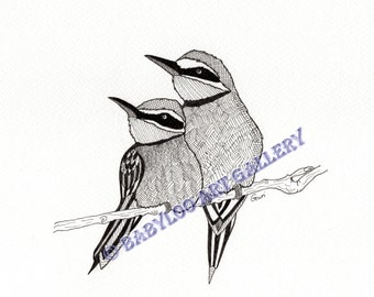 Bee-Eater Birds - Ink Drawing