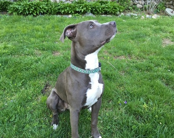 Checkered Jacquard dog collar