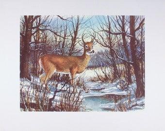 DEER PRINT, Deer Poster, Deer Wall Art, Deer Art Decor, Deers, Wall Art Deer, Home Decor, Art Print, Wall Art, Deer Antlers, Lodge Decor