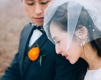 Birdcage Veil, Wedding Veil, Tulle Veil BLAIRE - Pearls Adorned Birdcage Veil