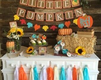 Little Pumpkin Fall Baby Shower Banner, First Birthday, Fall Party, Pumpkin Party, Baby Shower