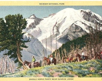 Vintage Washington State Postcard - Trail Riders near Sunrise Lodge, Mount Rainier National Park (Unused)