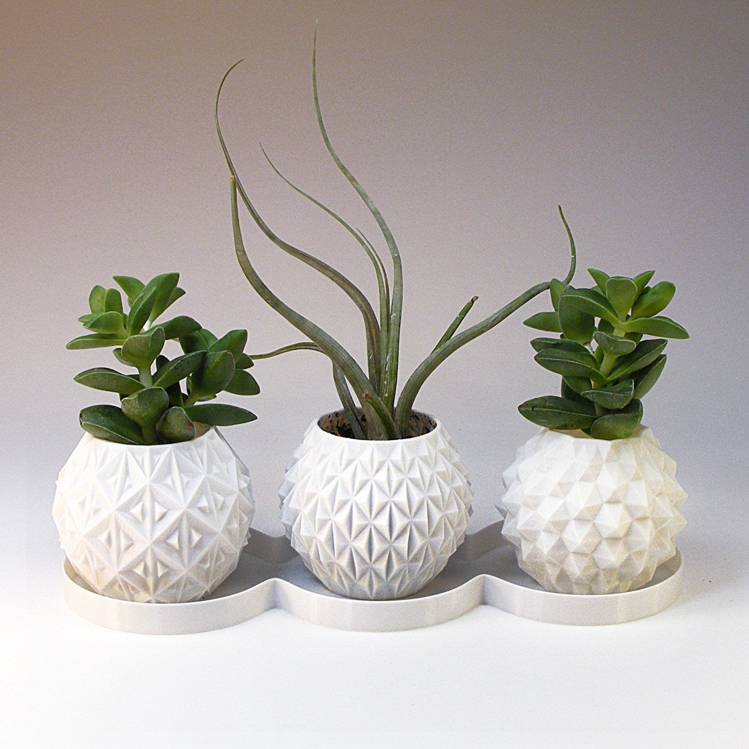 Succulent Planter Geometric Planter Set of 3 Small Office Gift