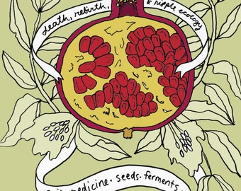 The Persephone Project Zine - soil - medicine - seeds - ferments