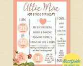 First Birthday Poster Printable with flowers 16x20 1st Birthday Stats Photo Prop vintage floral rustic girls birthday sign favorite things