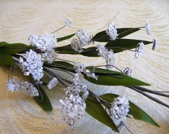 Vintage Queen Anne's Lace Millinery Spray Small White Flowers for Hats Weddings Bridal Floral Arrangements Crafts 2FN0040W