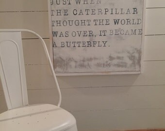 The Caterpillar became a Butterfly