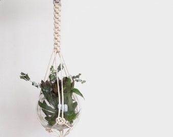 Grey macrame plant hanger, dyed plant hanger, pot plant holder, plant hanging basket, rope pot planter, indoor planter, terrarium holder
