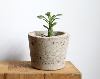 CONCRETE HYPERTUFA PLANTER—Gray Round Succulent Pot with Slate Marker—Fathers Day Gift, Wedding Registry Home & Garden—Concrete Beton/Maceta