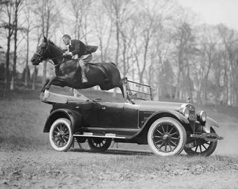 Horse Jumping Over Automobile, 1923. Vintage Photo Reproduction Print. 8x10 Black & White Photograph. Equestrian, Cars, 1920s, 20s.