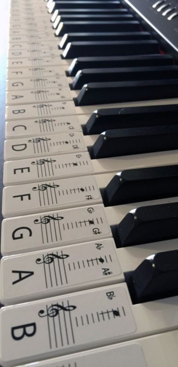 10 Best Starter Keyboards in 2019 [Buying Guide] - Music ...