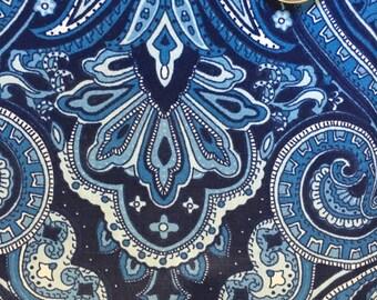 Gorgeous Blue Paisley
