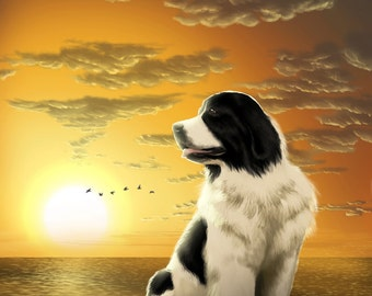Landseer ECT newfoundland white and black huge dog on a pier lifeguard hero sea sunset photo print