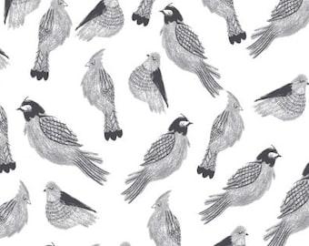 Last 1 Yard - Gray Sparrow Fabric - Shadowbox by Rae Ritchie for Dear Stella- Sleeping Sparrow - Fabric By The Half Yard