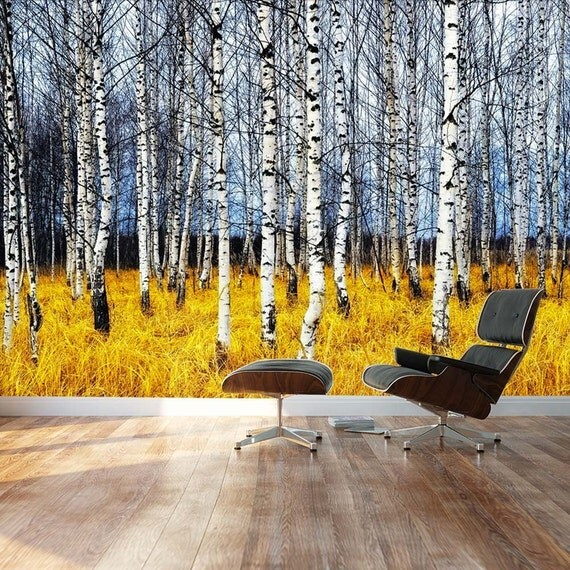 Beautiful aspen trees fall colors wall mural removable for Aspen wall mural