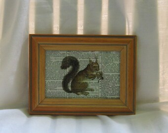 Brown Squirrel Framed Print on Vintage Dictionary Page