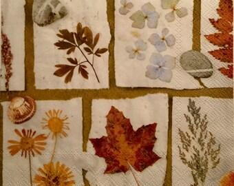 "3 Decoupage Lunch Napkins, Autumn Leaves Collage Herbarium 13"" x 13"""