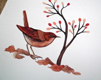 Nightingale 2 - Watercolor print , nightingale bird , bird art , giclee print , bird painting , 8 x 8 inch