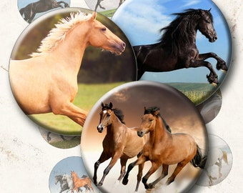 Horses - 15 Images 1 Inch Circle 4 x 6 Digital Collage Sheet For Bottlecaps, Cuff Links, Earrings, Necklaces, Cupcake Toppers
