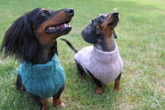 Free Dragon Knitting Pattern : Knitting Pattern, Top-Down Mini Dachshund Dog Sweater from LuckyFoxKnits on E...