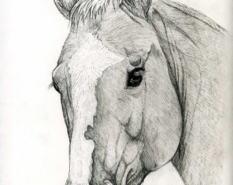 """Custom Pet Portrait. Black & White, Ink Pet Portrait. 9"""" x 11"""". One subject, made to order. Color option also available."""