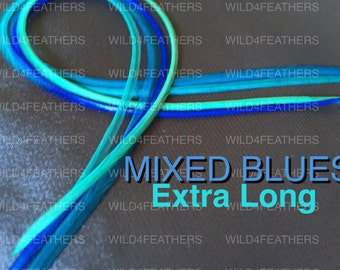 "XL4pc MixedBlues Feathers+XL1pc FREE Classic Grizzly in Extra Long Lengths:9.6""-11"" or 24-28cm,AuSLr"