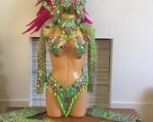 Gorgeous Green and Pink Samba Costume
