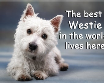 Westie West Highland White Terrier Dog Funny Fridge Magnet Gift