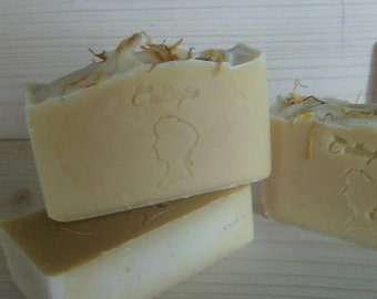Aloe vera and mastic soap