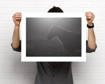 Wild horse poster- Black & White