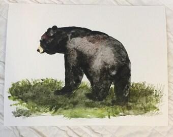 8.5 x11 Watercolor Print Black Bear
