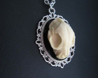Cat Skull Necklace, Faux Taxidermy