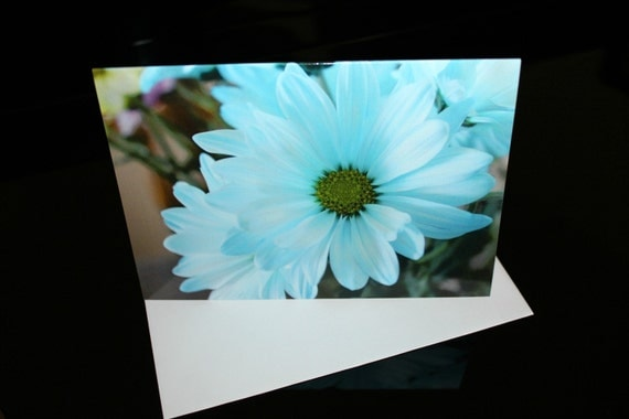 Blue Daisy 5x7 Photo Blank Note Card, Single or Set