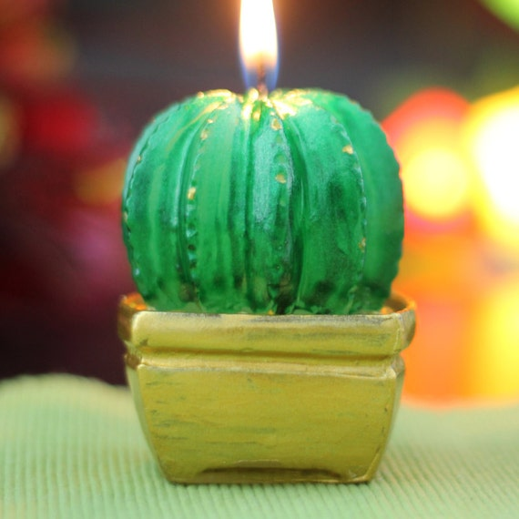 Cactus Cake Mould