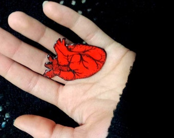 Anatomically Correct Heart Pin
