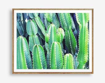Cactus print, Western decor, Arizona, Modern art, Wall decor, Digital art, Printable, Digital poster Instant Download 8x10, 11x14, 16x20