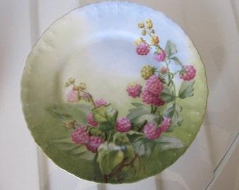 "Rasberry Plate 6"""