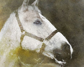 Horse Original Paiting Oil on Canvas,Contemporary Fine Art, Animal Art, Modern Horse Art-Horse,contemporary paintings for sale,Horse Art