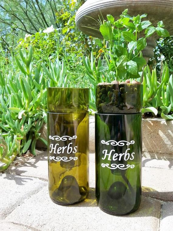 Self Watering Hydroponic Garden Gift Wine Bottle Indoor Herb