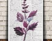 Basil decor Kitchen print Herb poster Watercolor print RTA1489