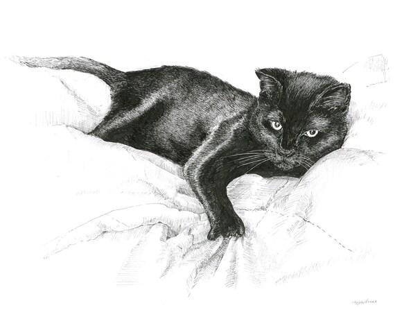 Black Cat Drawing Original Artwork Realistic By