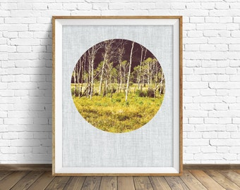 "landscape photography, large art, large wall art, instant download printable art, nature photography, nature prints - ""Aspen Tree Meadow"""