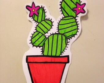 Long Living Cactus!