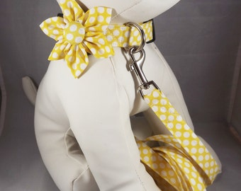 "Yellow Collar& Leash Set, Handmade Dog Leash, Dog Collar and Lead set, Choose Pattern, Dog Lead and Collar Set, Pick 18"", 4 ft, 6 ft leash"