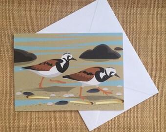 Turnstone bird greeting card - blank inside