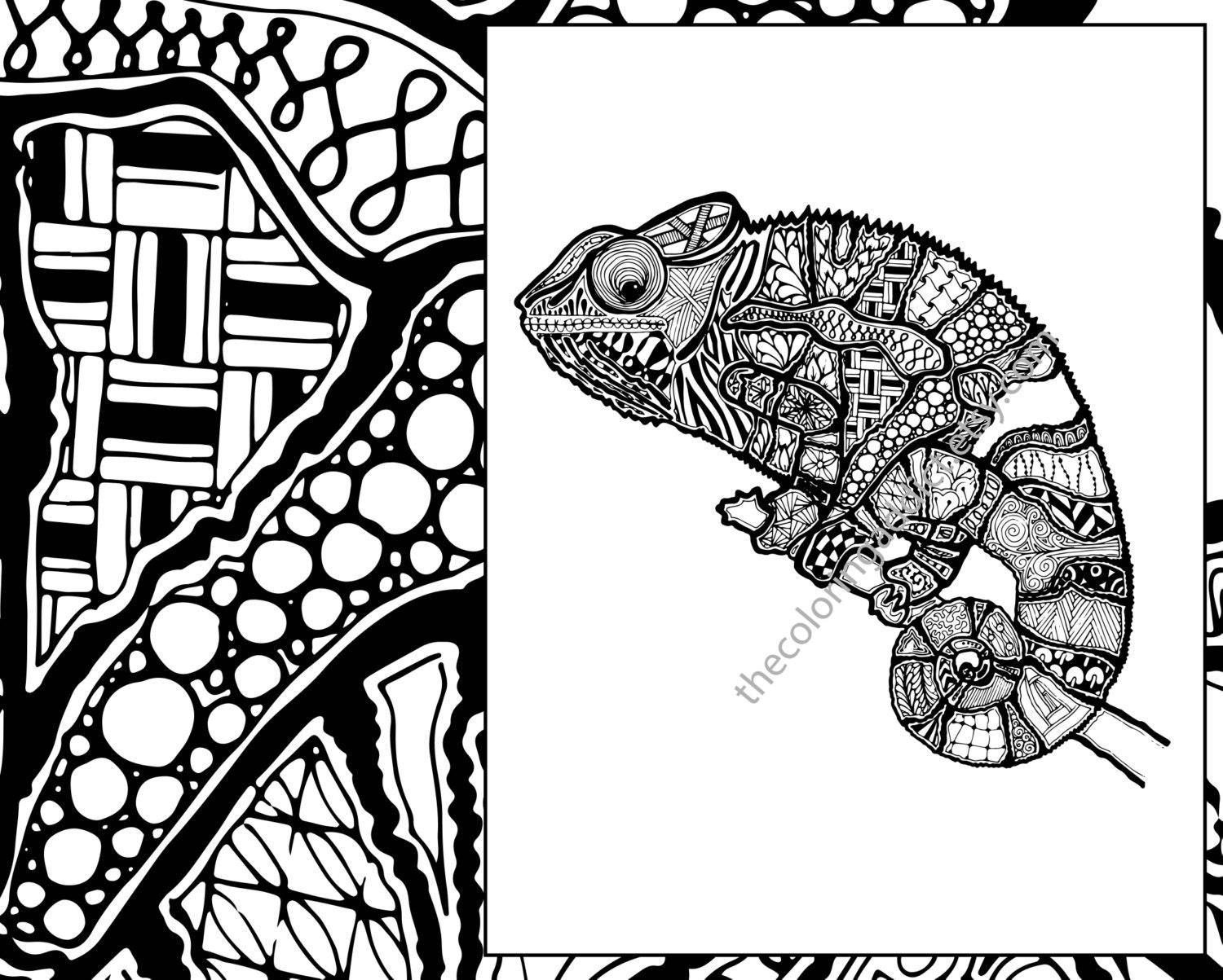 zentangle lizard coloring page animal zentangle colouring